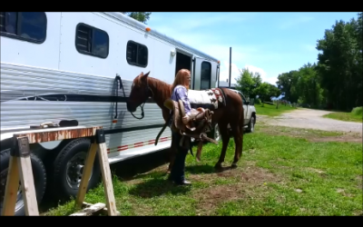 Part 2: How To Saddle A Horse (with Video)