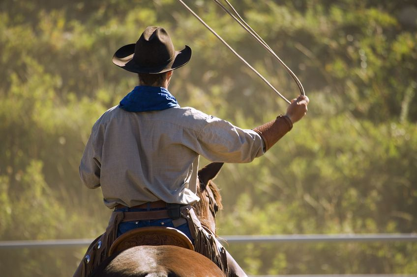 Image result for cowboys from texas