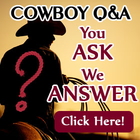 Cowboy-qa-banner2