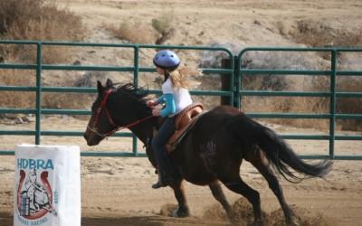 Fear Of Horses