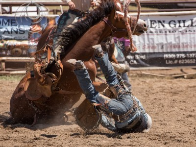 This Part-time Cowboy Lifestyle…Is It Really Worth It All?